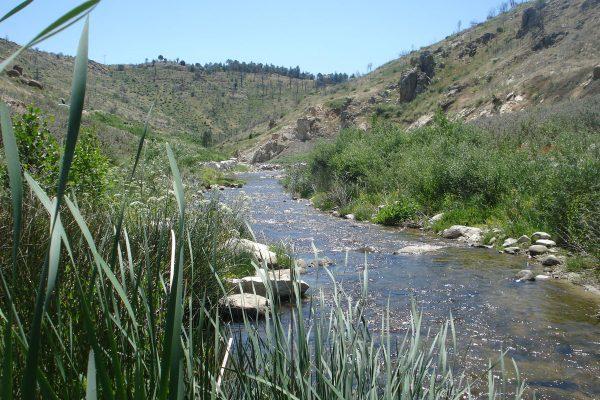 robledo-de-chavela-dam-may2015_after-1-web