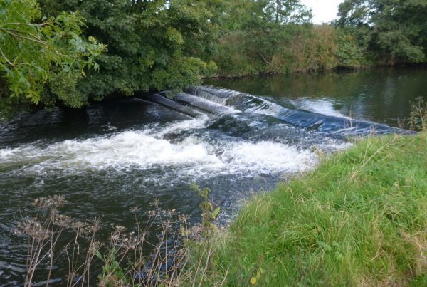 50 Weir Removals on the River Dove, UK