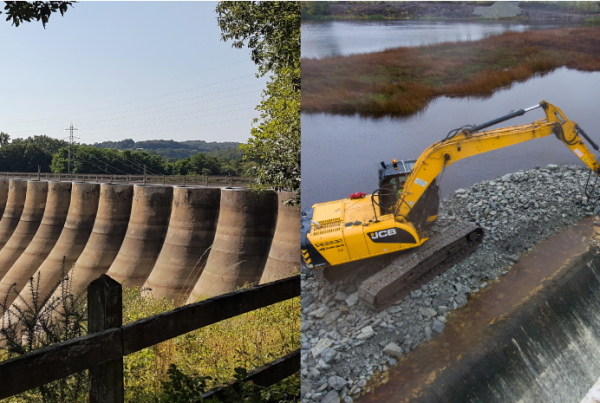 Seminars/ Workshops/ Conferences and Meetings – Dam Removal
